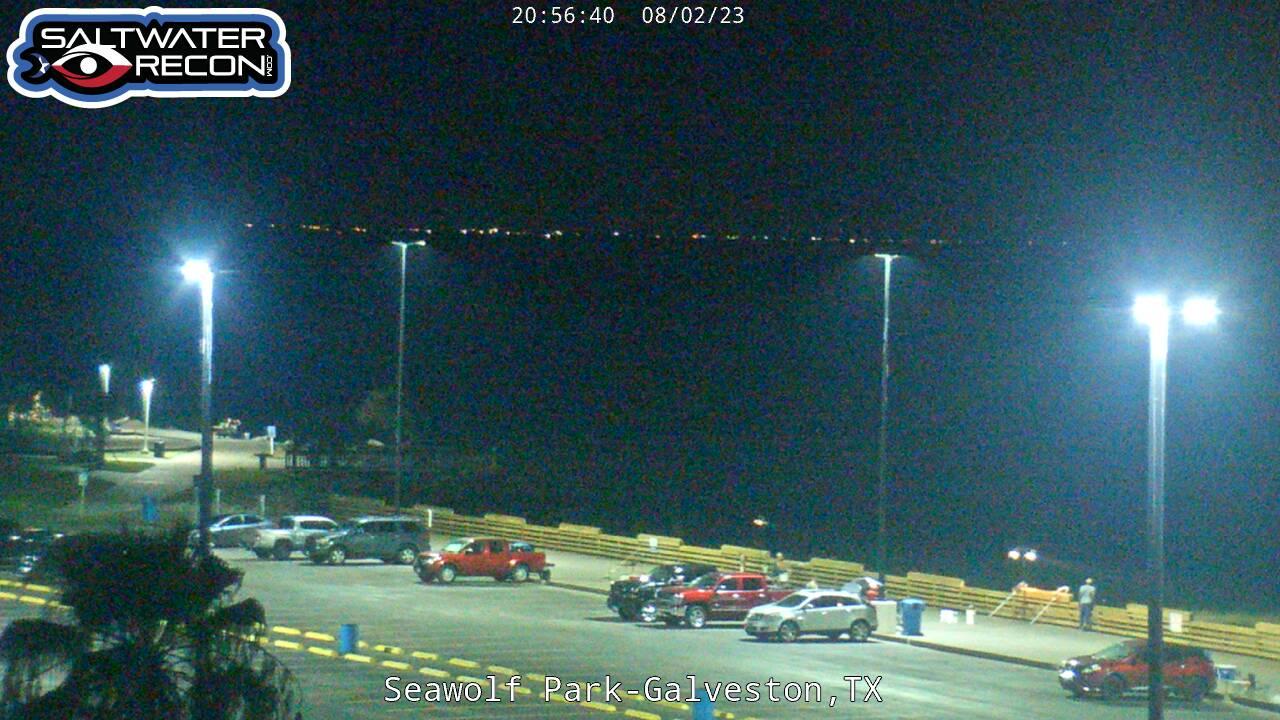 Galveston Webcam