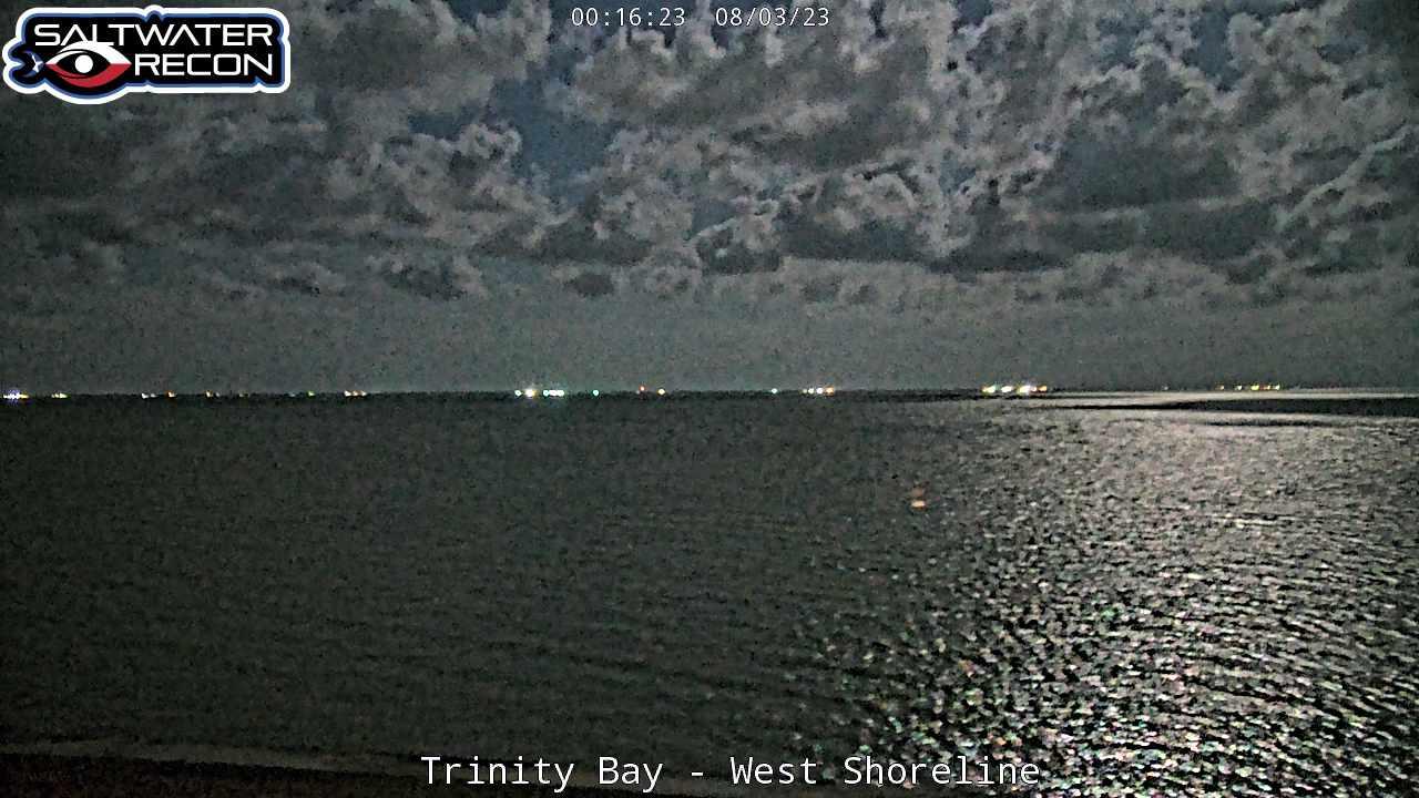Trinity Bay Webcam